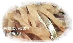 太刀魚の刺身